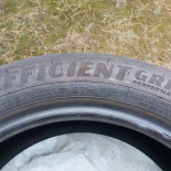 195/55R16 Goodyear EFFICIENT GRIP Performance                               87                              H                   यात्री कार